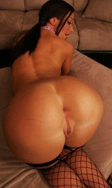 Фото порно красивых жоп