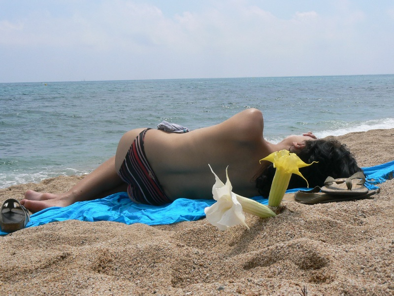 Pregnant with girlfriend relaxing topless on the beach 3 photo