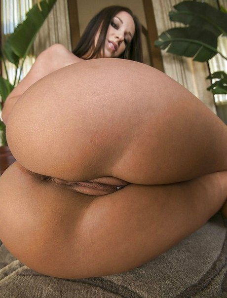 Big sweet asses of american porn stars 4 photo